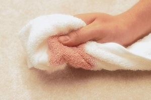carpet stain clean
